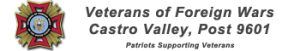 sponsor-vfw9601